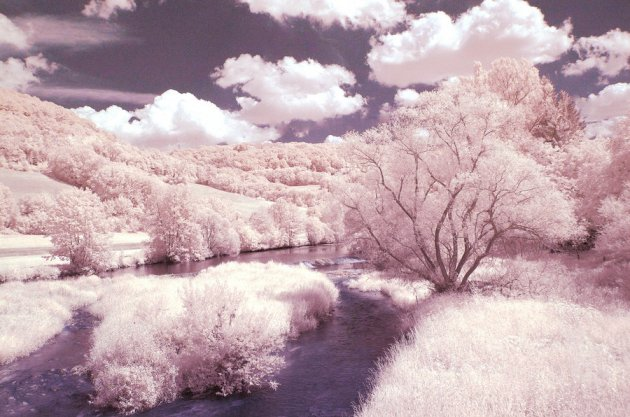 cotton_candy_land_by_xtarfizh-d2xoig8